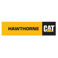hawthorne-cat